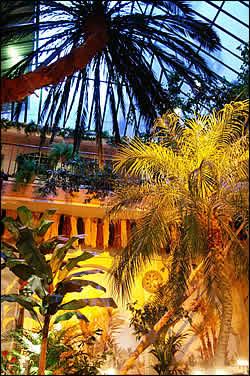 Restaurant Riad A Paris